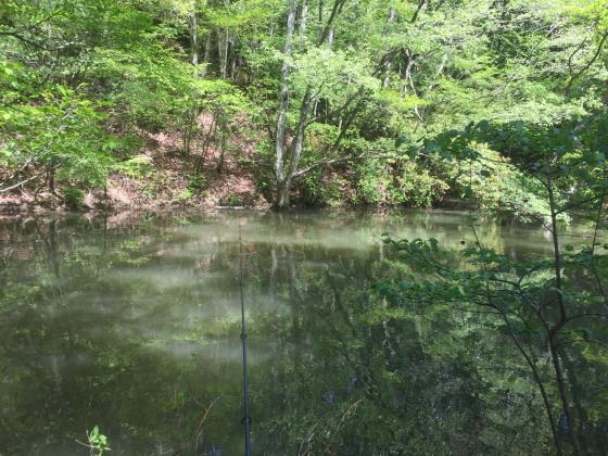三河湖釣り