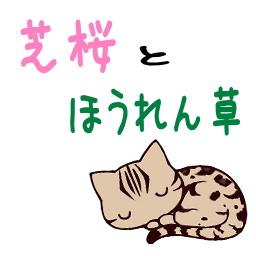 芝桜の品種