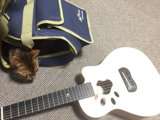 テトギター